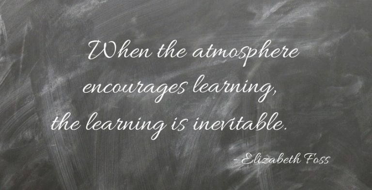 The Ingredients of a Learning Environment